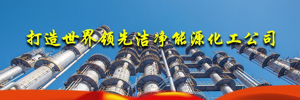 打造石油工程铁军 建设国内一流、国际知名的石油工程总承包商和EPC承包商